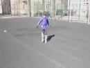 Чеканка теннисным мячом 20 раз (Платон)