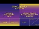 Binary District x Strelka: Формирование исследовательских заделов. Дискуссия
