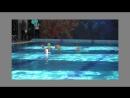 Наш акваклуб «Aquаtica» принимает на занятия мальчиков и девочек для обучения синхронному плаванию и водному поло