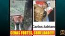 Homem espanca e mata cachorro por mexer em galinhas em Divinópolis - 19/01/2019