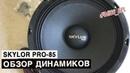 Динамики SKYLOR PRO-85 - обзор и прослушка - miss_spl