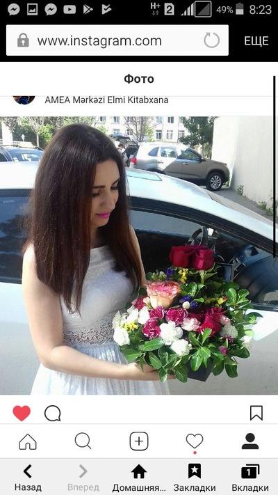 Нармин Асадова