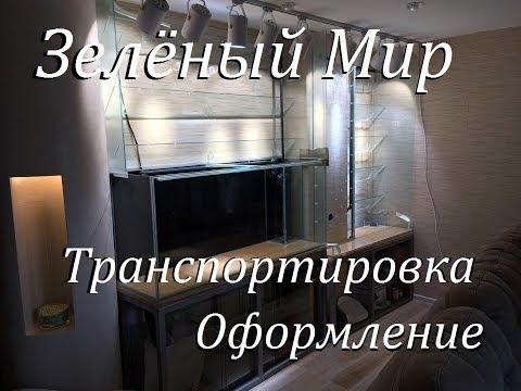 Аквариумпермь рф №4 Зелёный мир Аквариум фитостены Ваби Куса Транспортировка установка