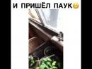 Ya_plakal_vidosBnndYNdF9BR.mp4