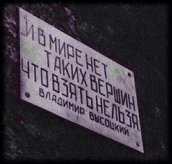 suchek-straponom-u-kogo-ruki-ne-iz-zhopi
