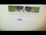 Розыгрыш билетов в контактный зоопарк Ферма добра в Мозыре