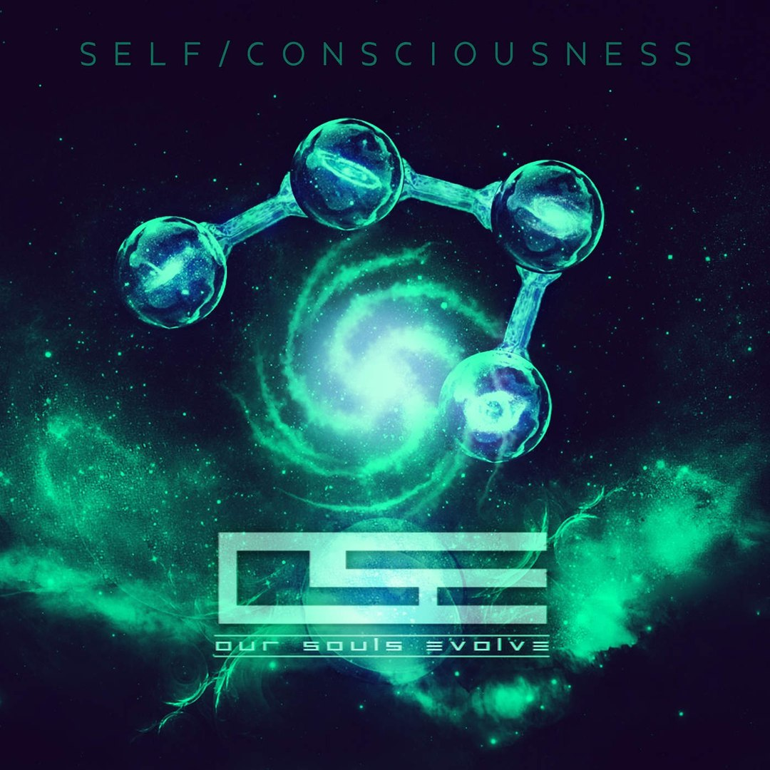 Our Souls Evolve - Self/Consciousness (2015)