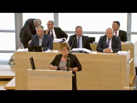 AfD Zwischenfragen bringen Ministerin in Erklärungsnot