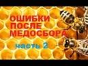 Осенняя ревизия пчёл. Грубые ошибки пчеловода. Рано сократил - семью погубил....