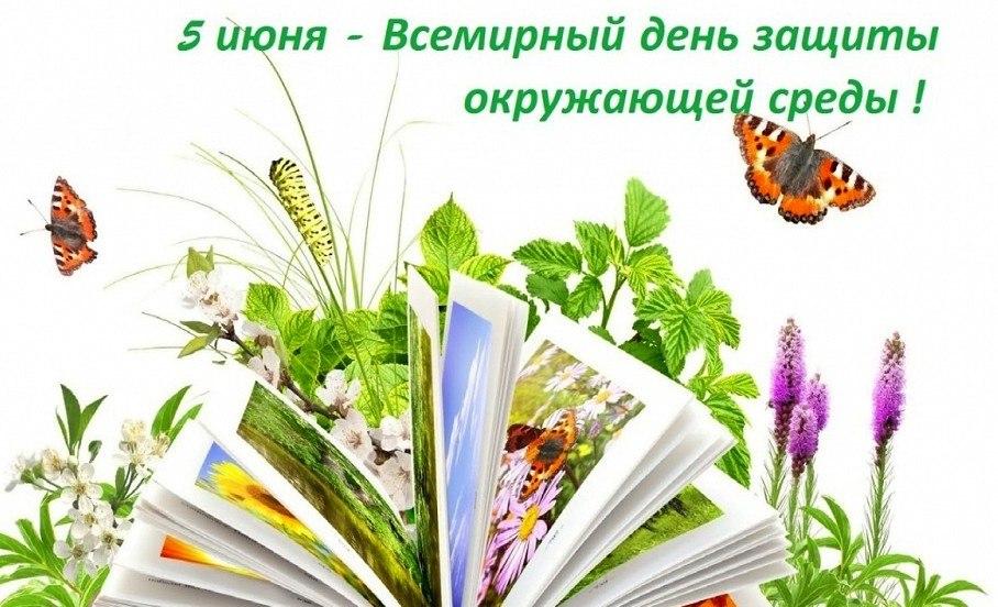 https://pp.userapi.com/c845323/v845323312/6b886/i2ke_VU6mUE.jpg