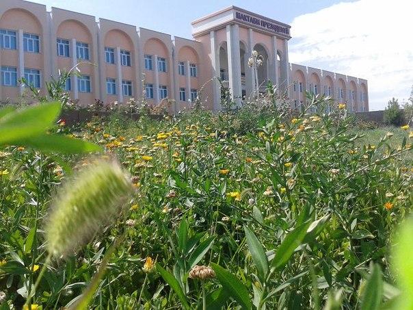 новости таджикистана сегодня видео