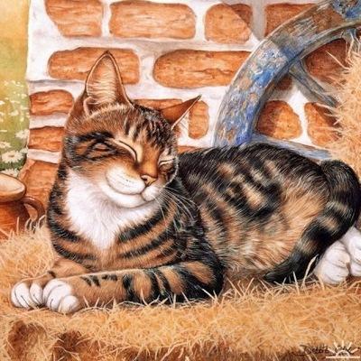 Fluffy Kitten, 1 апреля 1992, Санкт-Петербург, id206086266