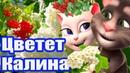 💋 Цветет Калина 💋 Так Мило и с Любовью 🌹❤️ что Просто нет Слов 💕 Анжела и Томик 💕