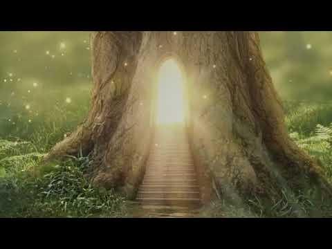 Дзен-Стронгвинд-Разбей стену вдребезги, Быстрое просветление,от автора