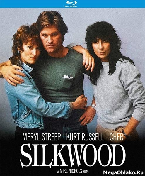 Силквуд / Silkwood (1983/BDRip/HDRip)