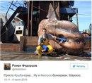Роман Федорцов, работающий на рыболовецком траулере…