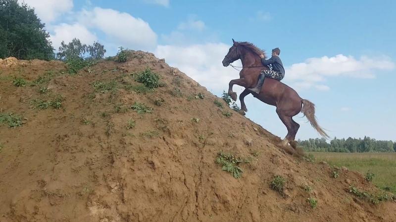Вверх на лошади на сыпучую гору земли. 2