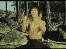 Брюс и кунг-фу монастыря Шао-Линь / Bruce and Shao-lin Kung Fu / Shadow of the Snake Wizard / Der Gelbe Gorilla / Da mo tie zhi