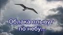 Плывут облака по небу