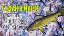 Как ловить судака в марте ? На что ловиться судак в марте? Где ловить судака в марте?