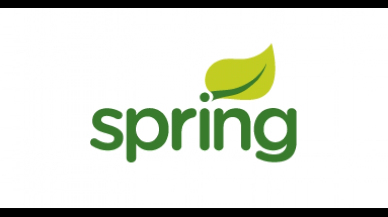073 - Spring. Порядок разработки
