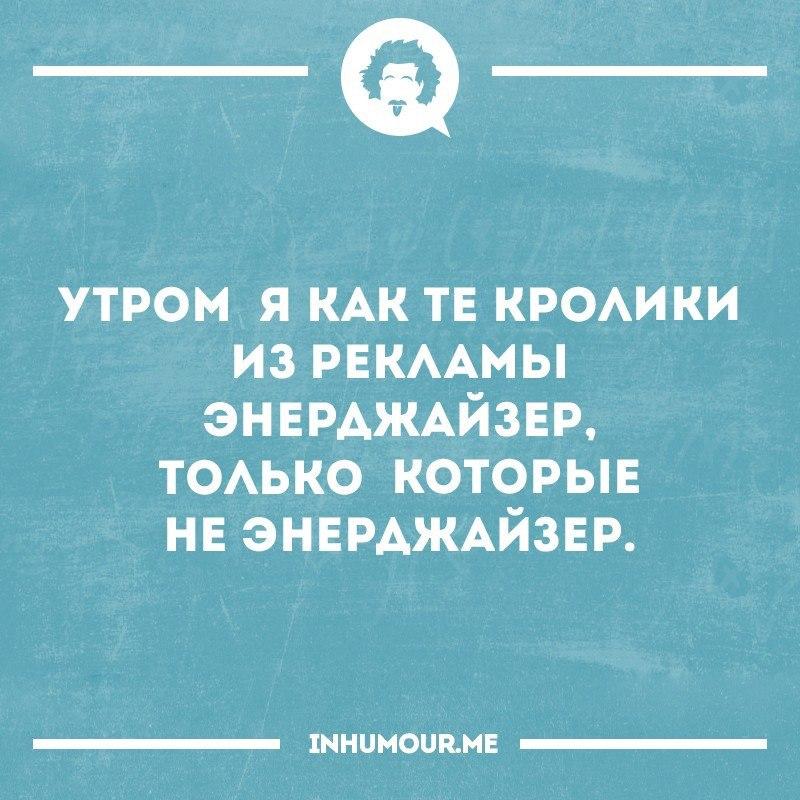 https://pp.vk.me/c543109/v543109554/2042f/I4hBmNnp1gg.jpg