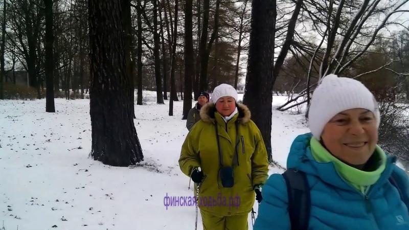 Скандинавская ходьба на Елагином 09 декабря 2018 года, Санкт Петербург