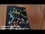 make folded and stitched pvc soft 3d lenticular photos 3d pictures printing for school bags