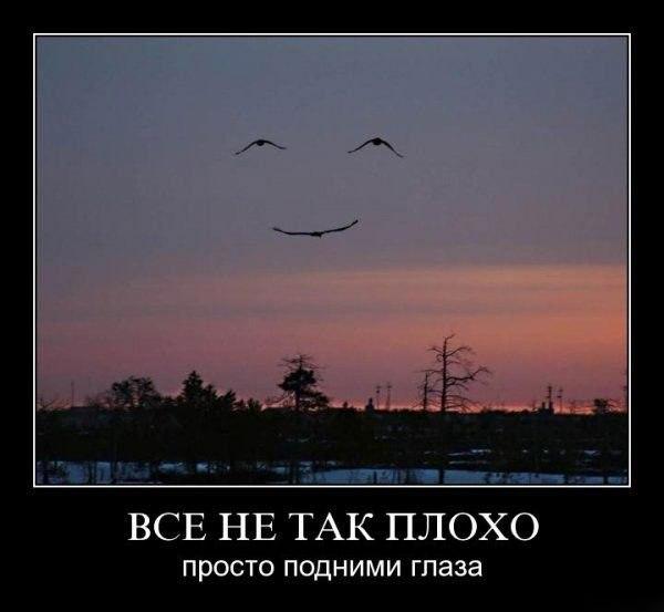 http://cs322316.vk.me/v322316104/4806/1YAUzEsa2Zg.jpg