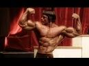 Arnold Schwarzenegger Bodybuilding Training Motivation The KING 2018