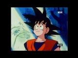 Dragon Ball Z - 001 [Дубляж 2x2] (myvi.ru)