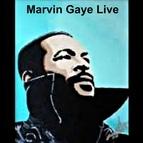 Marvin Gaye альбом Marvin Gaye Live