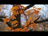 Autumn Leaves - Natasha Marsh. Осенний листопад