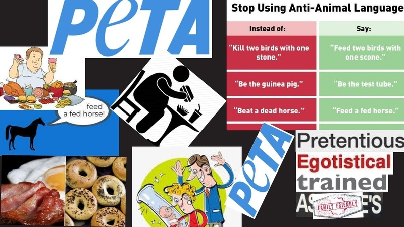 PETA says phrases such as'bring home the bacon' are comparable to racism homophobia speciesism