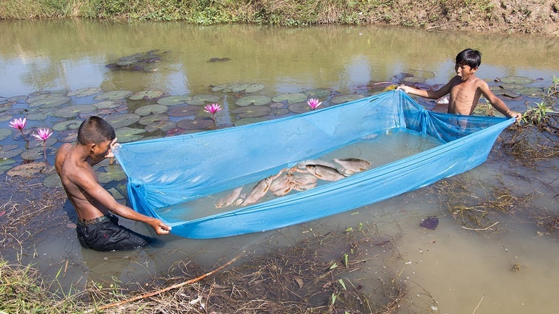 Unique Fish Trapping - Amazing Way of Catching Fish Using Mosquito Net | Cambo Trap