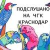Подслушано на ЧГК Краснодар