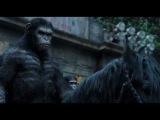 Планета обезьян: Революция | Дублированный ТВ-спот №2