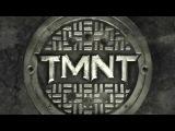 Черепашки ниндзя 2014 Teenage Mutant Ninja Turtles Меган Фокс, Алан Ричсон