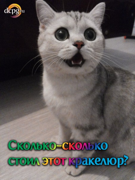 E-aXxhpo4GY.jpg