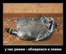 Антон Потапов фото #17