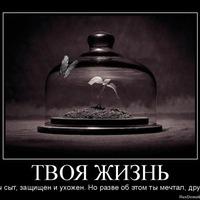Нурсултан Канатбекулы, 25 апреля 1998, Москва, id187875431