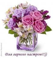 роза,розы,цветы,настроение,хорошее настроение,другу,подруге,квіти,троянда,троянди,подрузі,настрий,гарного настрою,