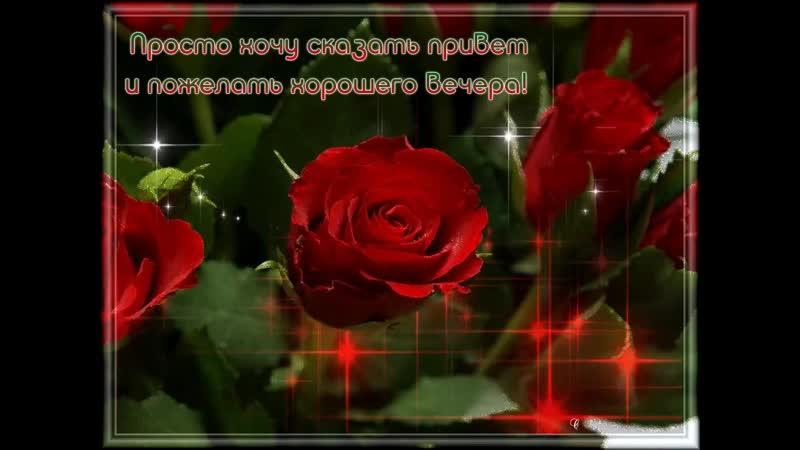 Doc344370820_499389923.mp4
