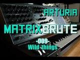 Arturia Matrixbrute 009 - Wild things