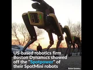 Amazing robo-dogs pull a truck in a parking lot via boston dynamics