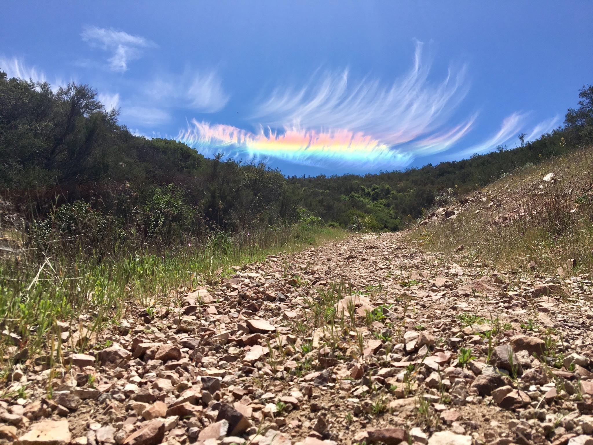 Радужные облака было на момент 2009 года довольно редким явлением, называемое радужные облака, которое порой может быть многоцветным, и иногда демонстрировать весь спектр в один момент. Эти облака состоят из мельчайших водяных капелек примерно одинаковых размеров. Когда Солнце находится под определенным углом и почти скрыто толстыми облаками, более тонкие облака преломляют солнечный свет когерентно, так что разные цвета отклоняются по-разному. Таким образом, лучи света различных цветов приходят к наблюдателю с немного разных направлений. Многие облака могли бы выглядеть как радужные и могли бы быть разноцветными, но оказываются слишком толстыми, либо слишком перемешанными, либо слишком далеко от Солнца. 26 апрель 2018 год © фотографии M. Jimenez Яркая радужная дуга и перистые облака над Национальным парком Пиннаклс, штат Калифорния, США.