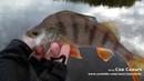 Хорошая погода на рыбалке хищник отказывается ловиться