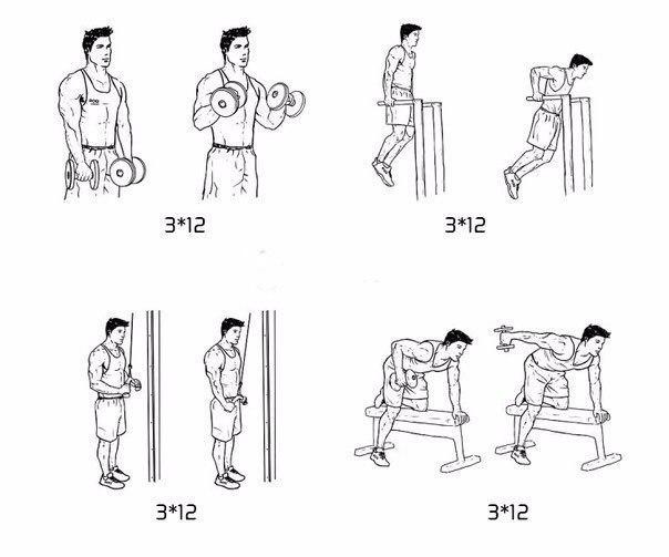 Рабочая тренировка рук