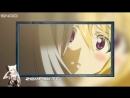 Безумие Infinite Stratos Типичное аниме в жанре эччи гарем