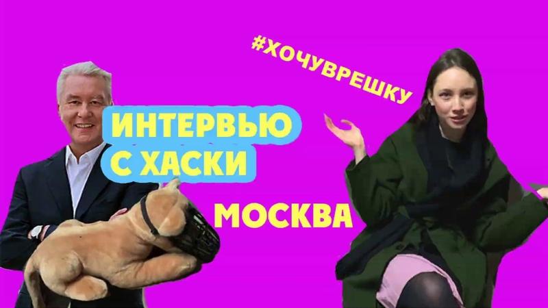 ХочуВРешку   Интервью с Хаски, трип по Москве, тайная жизнь москвичей